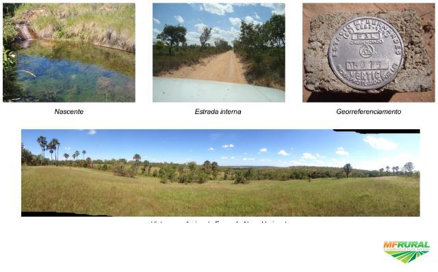 Fazenda  Tocantins (Ponte Alta / Lagoa do Tocantins)-  2295 hct. Muita água. Ótima topografia!
