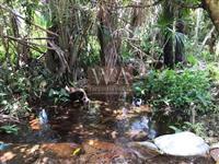 Fazenda a venda na região do vale do Araguaia em Abreulândia-To