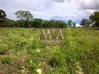 Fazenda com preço atrativo no Tocantins