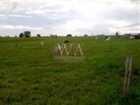 Fazenda para pecuária com preço atrativo na região do vale do Araguaia