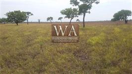 Fazenda com excelente localização no Tocantins