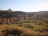 Fazenda de 200 alqueires em Nova Rosalândia-To
