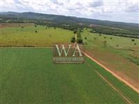 Fazenda na região central do Tocantins