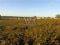 Fazenda excelente para soja no vale do Araguaia