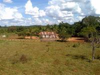 Fazenda com rio excelente para pecuária ou agricultura