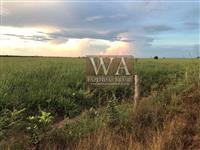 Fazenda em Pium do Tocantins