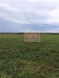Fazenda de (4.870 há) em Santa Cruz Do Xingu-To