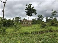 Fazenda com mais de 70% de terras culturas