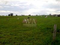 Fazenda com preço atrativo no vale Araguaia