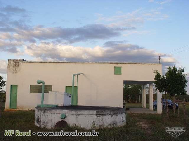 Fazenda em Morada Nova CE 753 Hectares Doc/ Geo