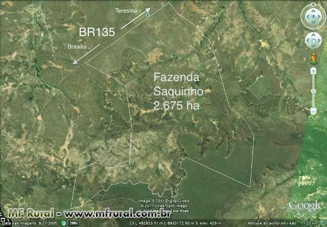 Fazenda na Matopiba, em Monte Alegre do Piauí - PI