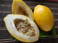 Maracujá Doce Passiflora Alata Sementes Fruta Flor P/ Mudas R$ 9,90