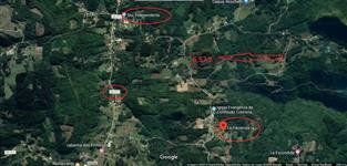 Área de terras com Oliveiras