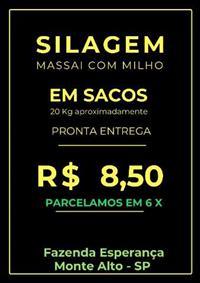 SILAGEM EM SACOS