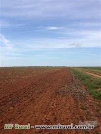 Fazenda Gaucha Do Norte