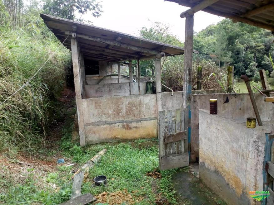 Vendo Sítio 16,16 alqueires em Cajati-SP