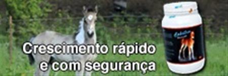 PROMOTOR DE CRESCIMENTO PARA POTROS