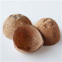 Compro casca de coco