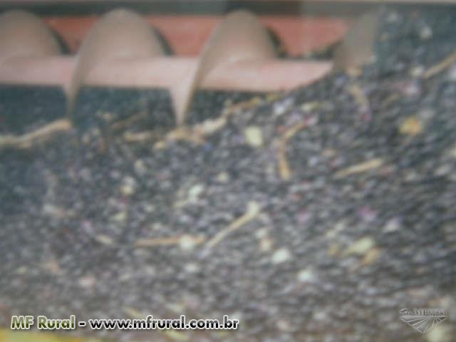 Colhedeira de feijao e soja SLC 1000