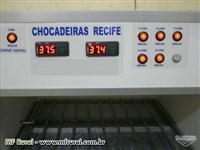 CHOCADEIRAS RECIFE CAP. 600 OVOS DE GALINHA