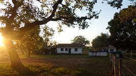 Fazenda de 1577 alq.  (7.632 ha)  em Araguaçu-To