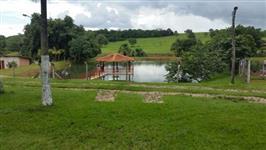 Fazenda de 35 alq. (169 ha.) no município do Varjão Go