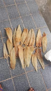 Vendo Grude de Peixe